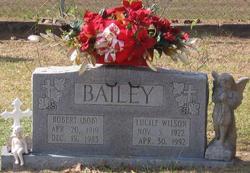 Robert Daniel Bailey