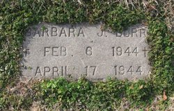 Barbara J. Burr