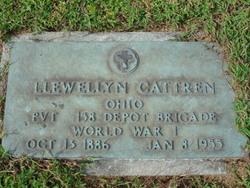 Llewellyn Johns Cattren
