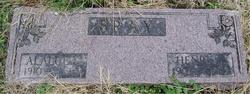 John Henry Bray