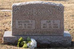 William T Gibson