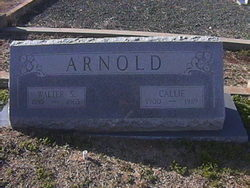 Callie Martha <i>Collins</i> Arnold