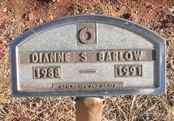 Dianne S Barlow