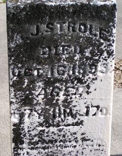 Andrew Jackson Strole