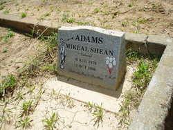 Mikeal Shean Adams
