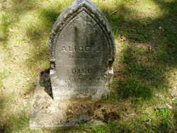 Alice J Baxter