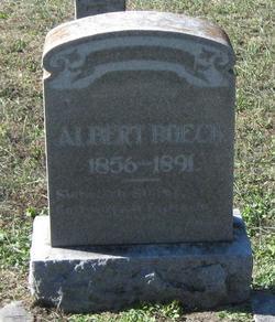 Albert Boeck