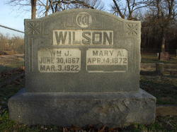 Mary Ann <i>Fields</i> Wilson