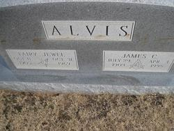 Fairy Jewell Alvis