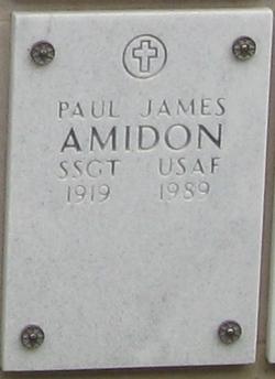 Sergeant Paul James Amidon