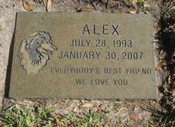 Alex Dog