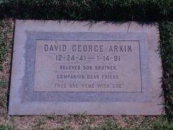 David George Arkin