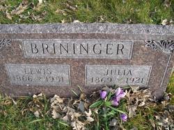 Julia Ann <i>Dawson</i> Brininger
