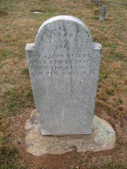 Rev Jacob Silver