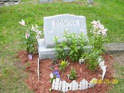 Archie W. Domina