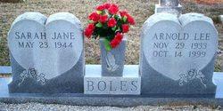 Sarah Jane Boles