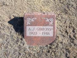 A. J. Gibbons, Jr