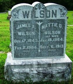 Mary Davis <i>Curry</i> Wilson