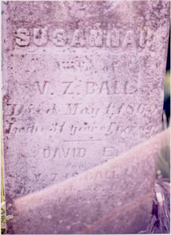 David E. Ball