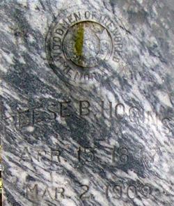 Reese B. Hogins
