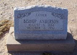 Bishop Anderson