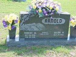 Robert W Arnold