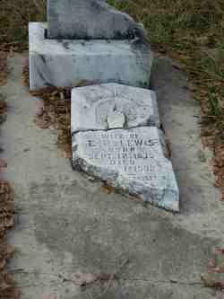 Mamie E. Lewis