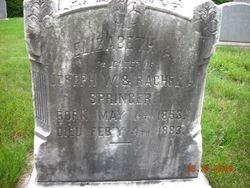 Elizabeth A Bessie Springer