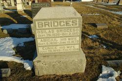 Abigail Bridges
