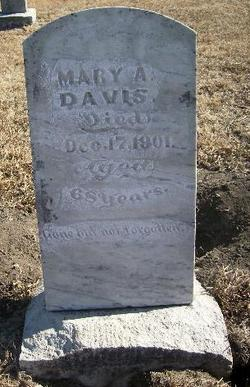 Mary Ann Polly <i>Shields</i> Davis