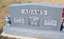 James Warren Adams