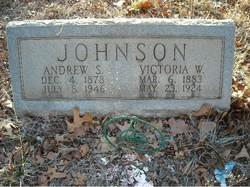 Andrew S Johnson