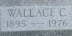 Wallace Clemouth Domina