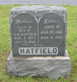 Amos Monroe Hatfield