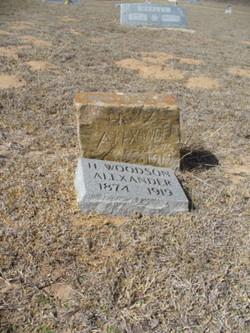 Henry Woodson Alexander