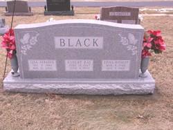 Lisa Ann <i>Black</i> Perkins
