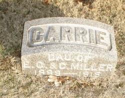 Carrie E. Miller