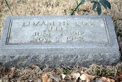 Elizabeth <i>Cox</i> Allen