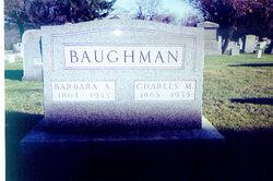 Barbara Ann <i>Birkbeck</i> Baughman