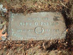 Abbie Grace <i>Morehead</i> Parrish