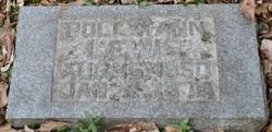 Polly Ann Lewis