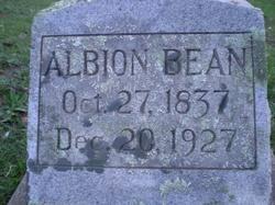 Albion Bean