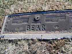 Ted J. Bear