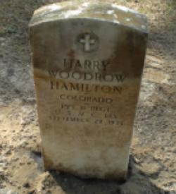 Harry Woodrow Hamilton