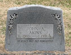 John Albert Akins