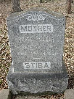 Rozie Rosa Stiba