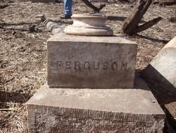 Sterling P Ferguson