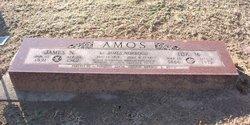 James Newton Amos