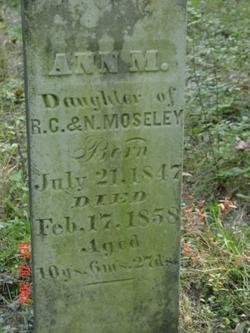 Ann Maria Moseley