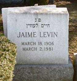 Jamie Lewin